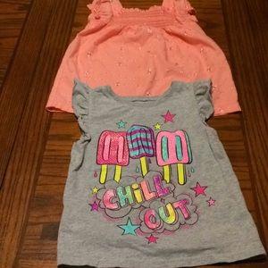 Toddler Girl's Shirts Size 3T Bundle